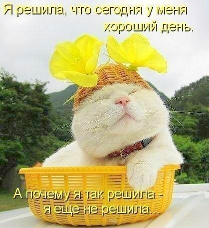 хороший день