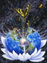 земля лотос бабочки космос