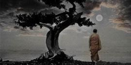 монах дзен
