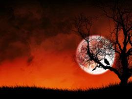 вальпургиева ночь2