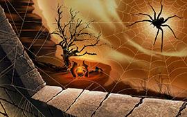 паук и ведьмы
