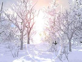 зимнее солнцестояние2