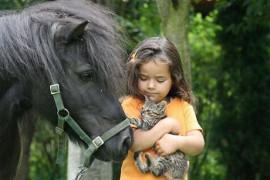 малышка и звери