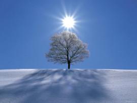 зимнее солнцестояние3