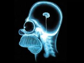 мозг ленивый