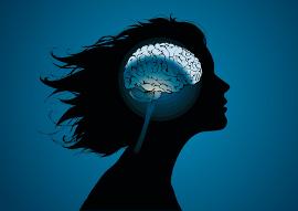 женщина мозг
