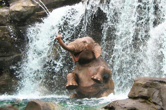 slon-ulybka